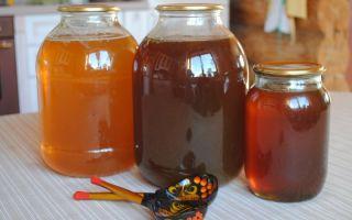 Падевый мед: что это такое, как отличить, полезные свойства
