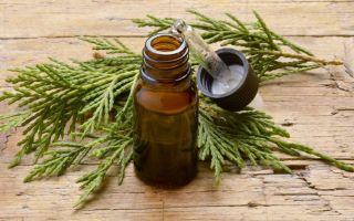 Эфирное масло можжевельника: польза, свойства и применение