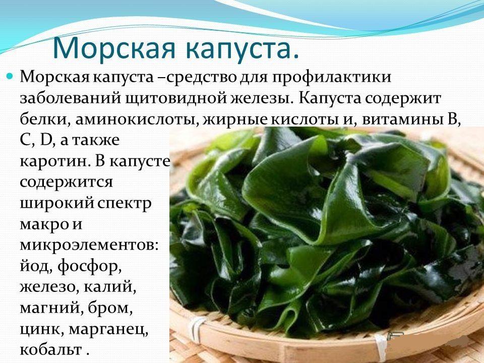 Есть Морскую Капусту Каждый День Можно Похудеть. Морская капуста – обязательный продукт при похудении