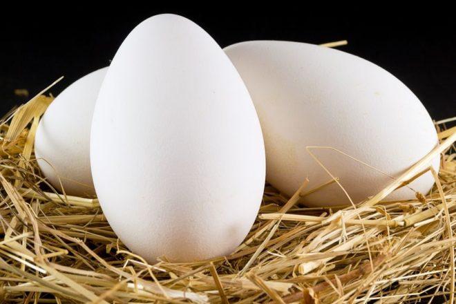 Можно ли перепелиные яйца детям до года
