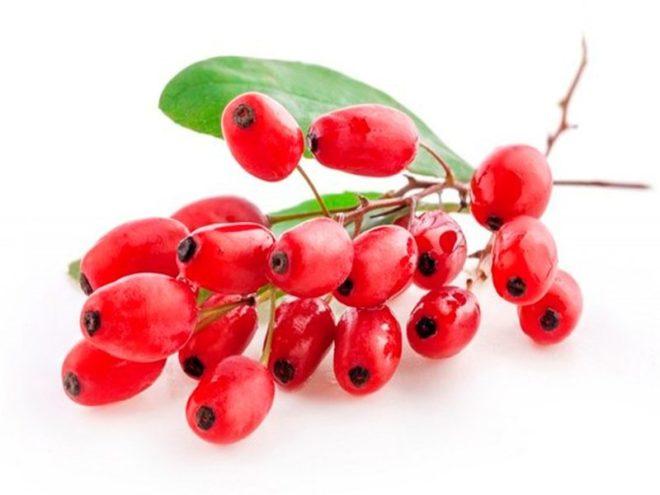 Барбарис как употреблять ягоды