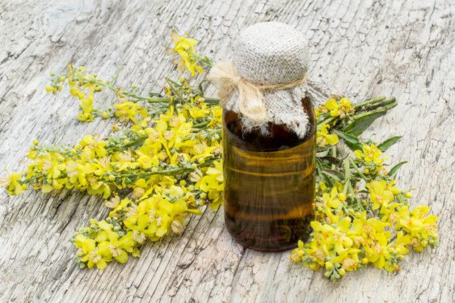 Рыжиковое масло полезные свойства и противопоказания. Польза и вред рыжикового масла. Как принимать