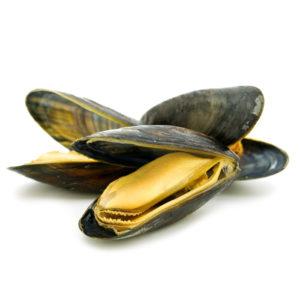 В чем заключаются полезные свойства мидий для мужчин