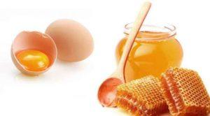 Перга пчелиная — полезные свойства, как принимать, отзывы и противопоказания