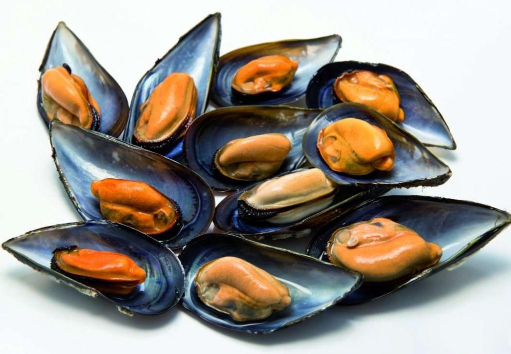 Ракушки и моллюски: чем полезны мидии и как их приготовить
