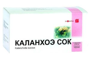 Лекарственные свойства каланхоэ