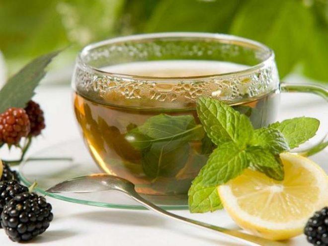 Мелисса - добавка в чай. Полезные и лечебные свойства