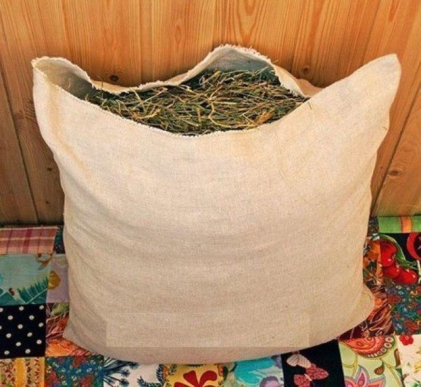Мелисса - добавка в чай.Подушка из мелиссы