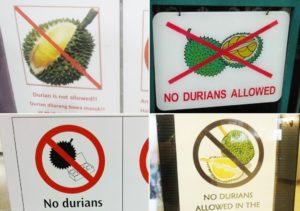 Полезные свойства дуриана - Польза или вред