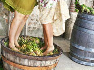 Чем полезно сухое белое вино
