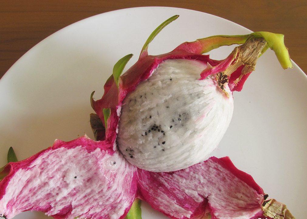Своими, картинки экзотические фрукты питахайя как есть и какой на вкус