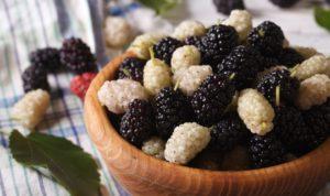 Варенье из шелковицы польза и вред рецепты с фото отзывы