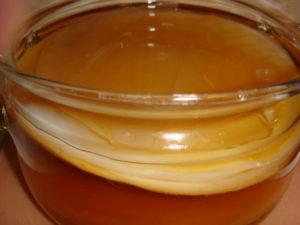 Полезность гриба чайного