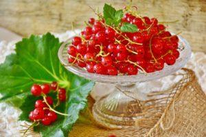 Сок красной смородины полезные свойства и противопоказания