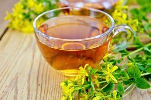 Зверобой трава лечебные свойства для женщин