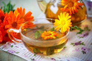 Растение календула лечебные свойства