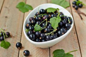 Черная смородина лечебные свойства и противопоказания для женщин thumbnail