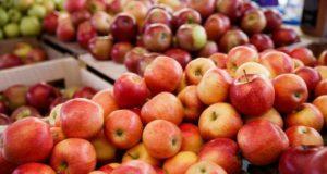 Яблоки польза и противопоказания