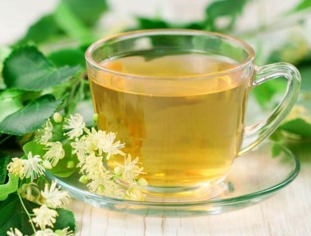 Чай из липы: польза и вред - Здоровый образ жизни