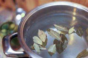 Лавровый лист в народной медицине – лечебные свойства и противопоказания, польза и вред, применение