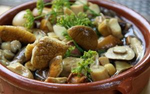 Как влияют грибы на организм человека