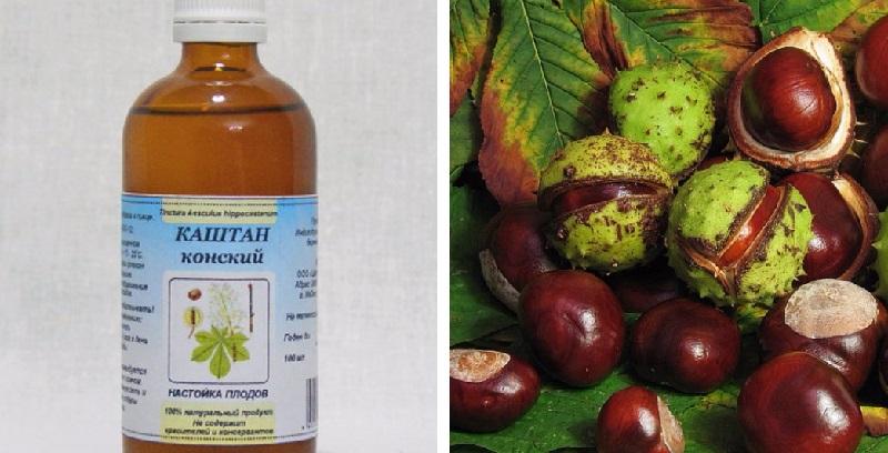 Каштан конский лечебные свойства и применение в народной медицине: полиартрит и лечение при варикозе, рецепт, как приготовить настойку