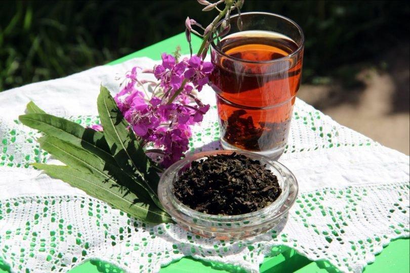 Чай кипрей полезные свойства