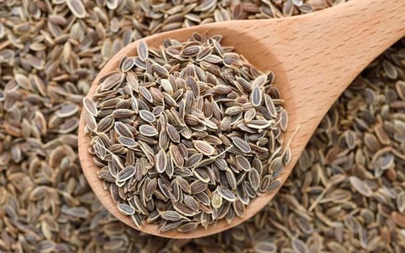 Семена укропа в народной медицине: свойства