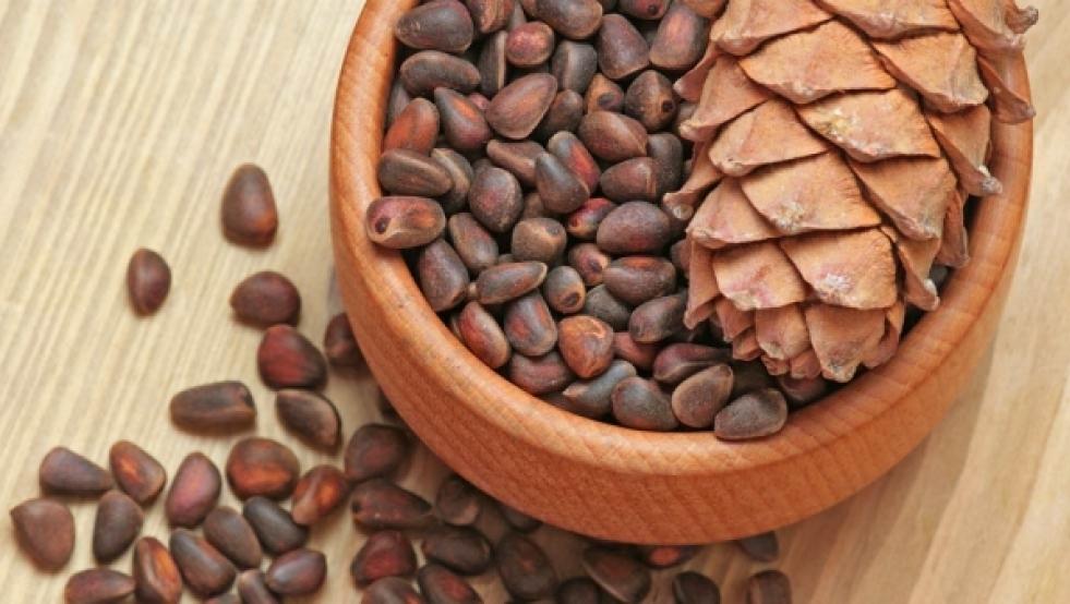 Польза кедровых орехов для организма ребенка
