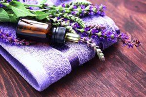 Шалфей лекарственный (трава)– полезные свойства и применение. Шалфей для зачатия, противопоказания