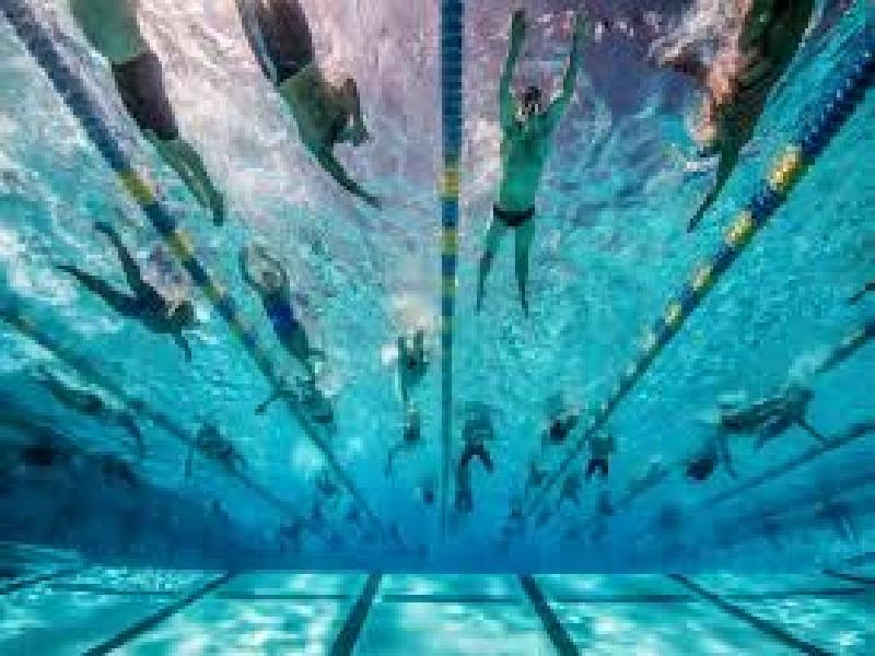 Чем полезно плавание в бассейне для женщин — Спортивный сайт