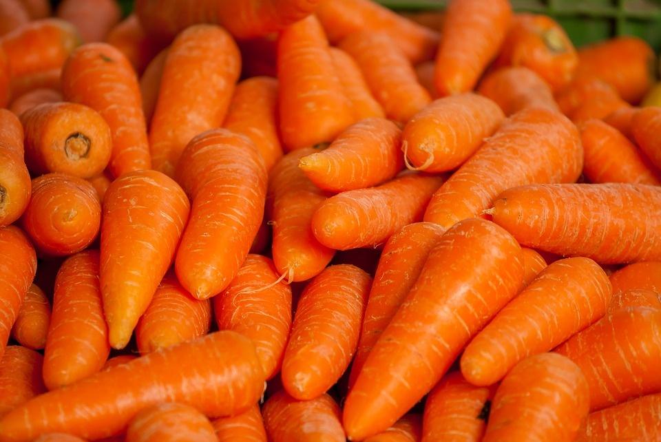 Тертая морковь с медом польза и вред. Морковь