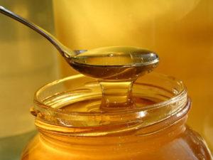 Мед целебные свойства и противопоказания