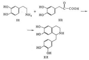 Лекарственные свойства чистотела