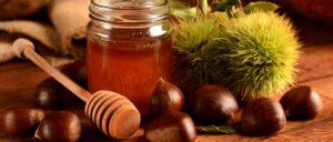 Каштановый мед свойства
