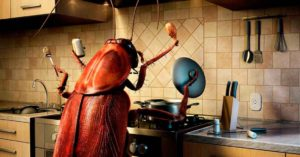 Масло лаванды от тараканов
