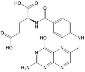 Фолиевая кислота с витаминами В12 и В6 – действие и препараты