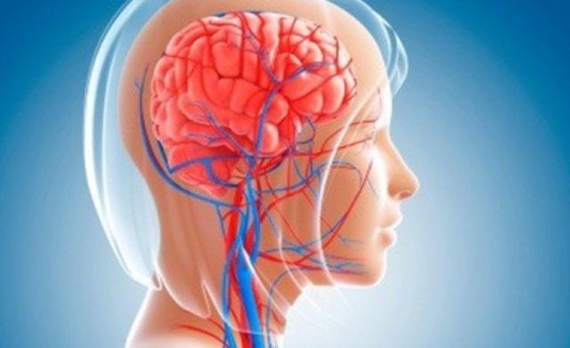 Витамины для сосудов головного мозга. Витамины для сосудов головного мозга и сердца взрослым и детям