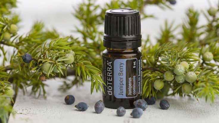 эфирные масла для простатита