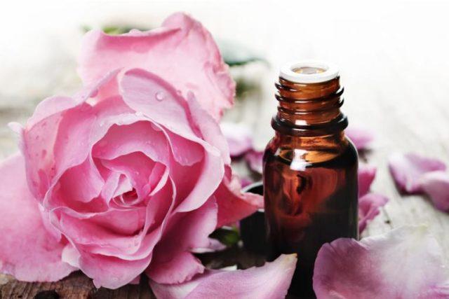 Эфирное масло дамасской розы: применение и полезные свойства