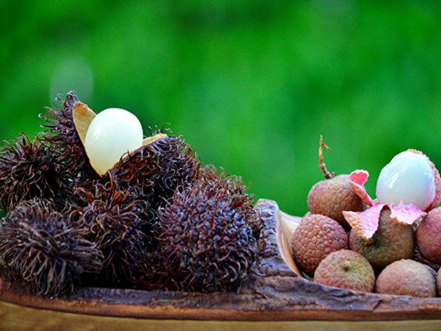 Рамбутан- калорийность, состав, употребление и выращивание