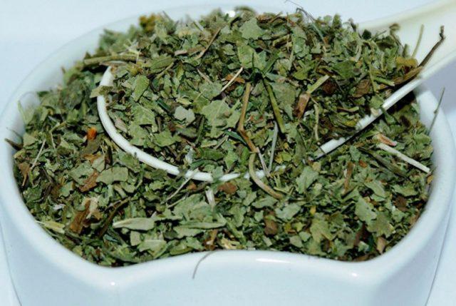 Манжетка трава применение