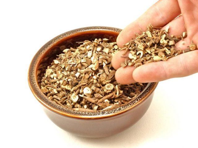 Володушка китайская (золотистая) - фото, свойства, корень володушки в препаратах, бад НСП в капсулах