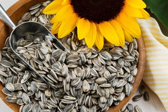 В каких продуктах содержится селен больше всего