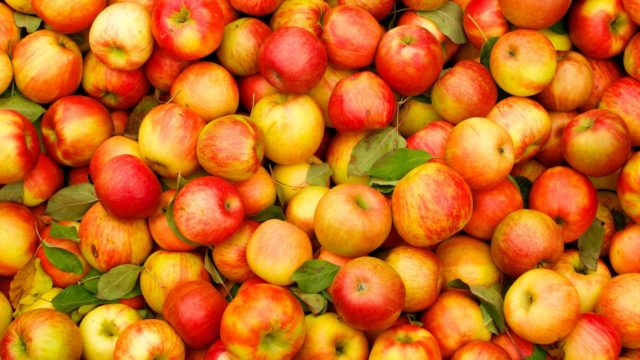 Какие фрукты необходимы для повышения иммунитета