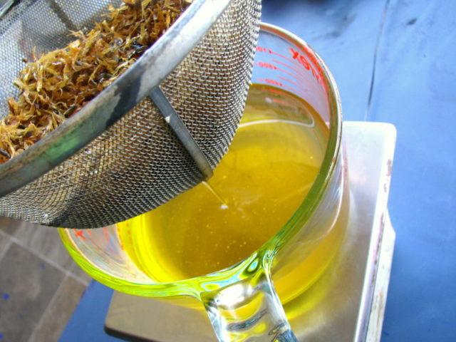 Пион уклоняющийся — лечебные свойства и противопоказания