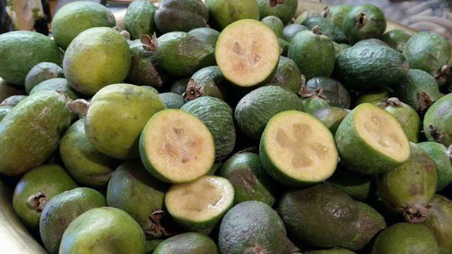 Какие фрукты необходимы для повышения иммунитета thumbnail