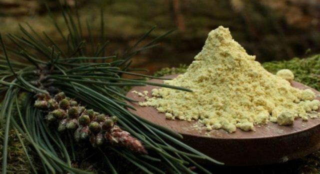 Пыльца цветочная при простатите и старении, свойства - Хвойный лекарь