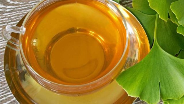Трава гинкго билоба: лечебные свойства и противопоказания, состав, применение в народной медицине, побочные действия