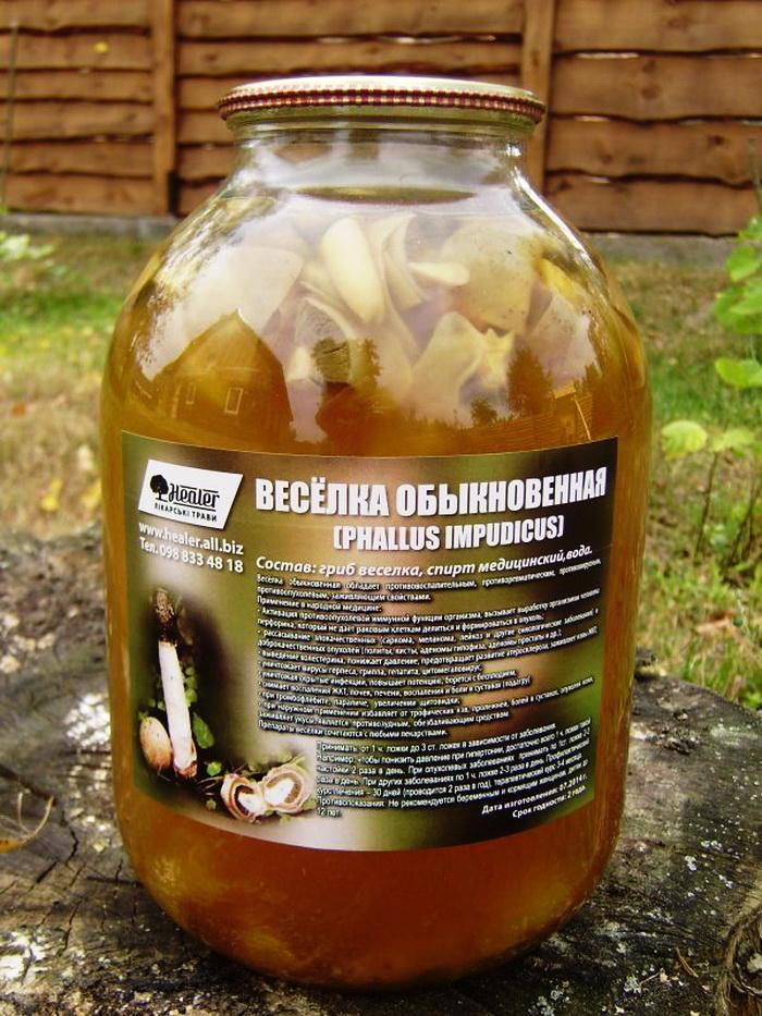Лечение простатита грибом веселкой свечи при простатите афала